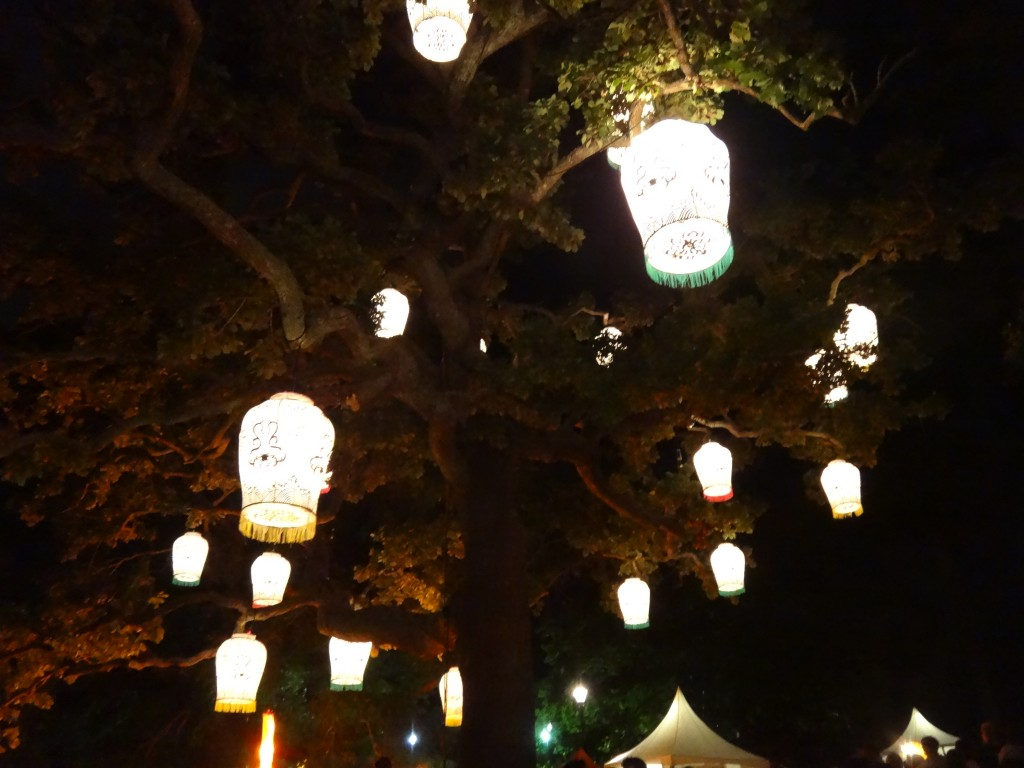 Chinese lanterns on the trees