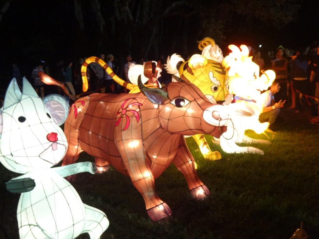 animal lanterns